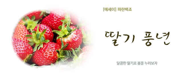 20180320이현숙-딸기풍년.jpg