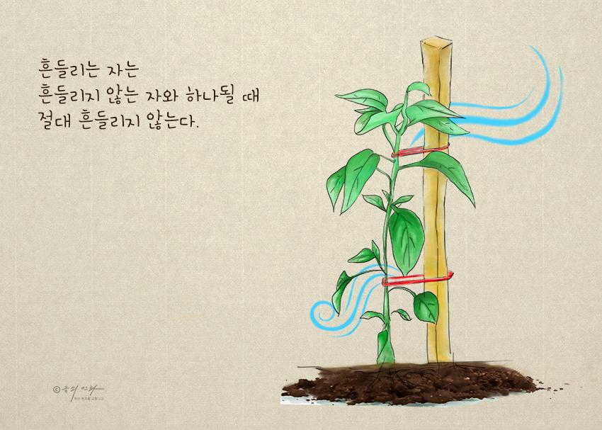 그림으로보는잠언_흔들리는자.png