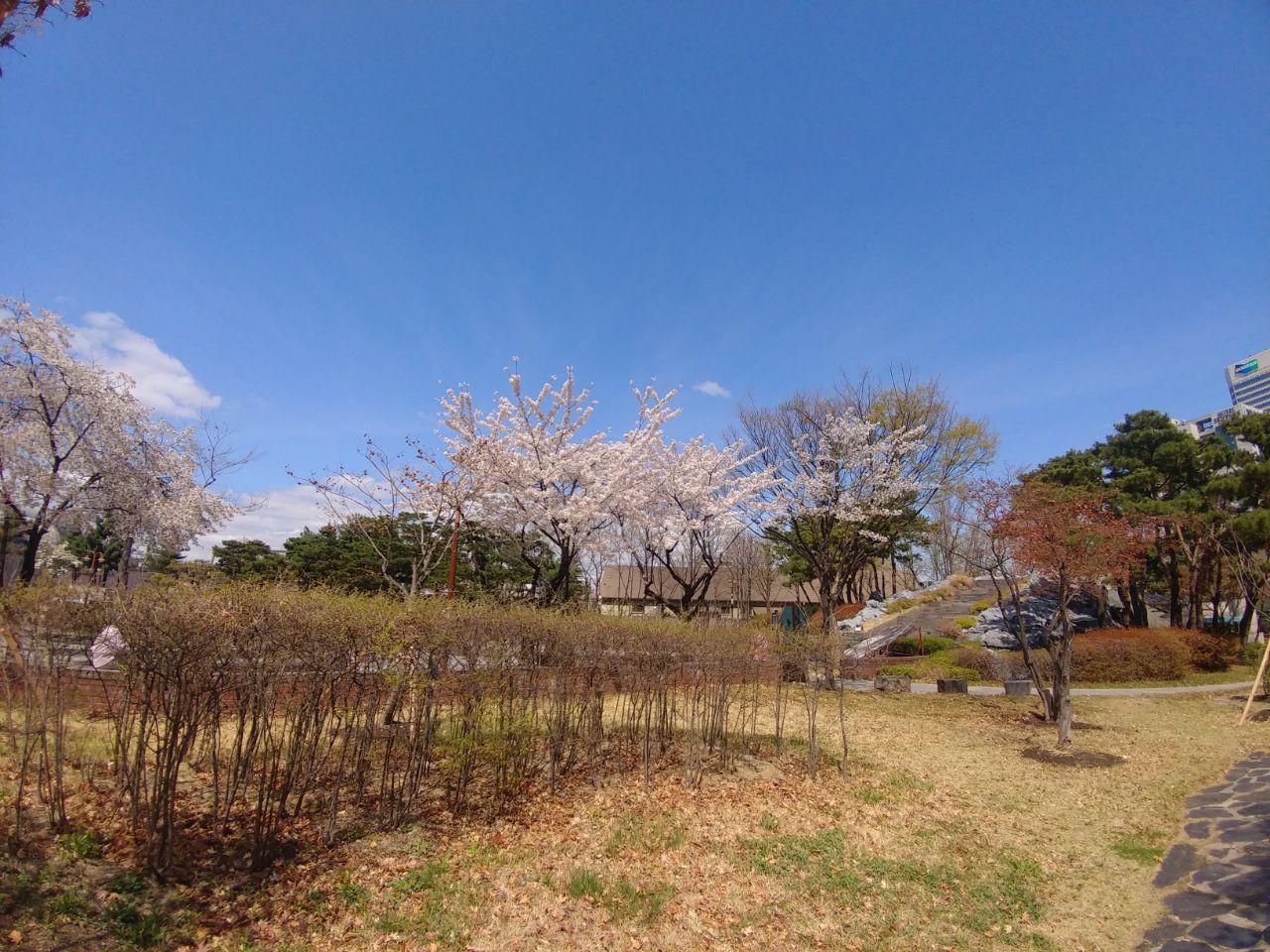 photo_2018-04-04_23-17-49.jpg
