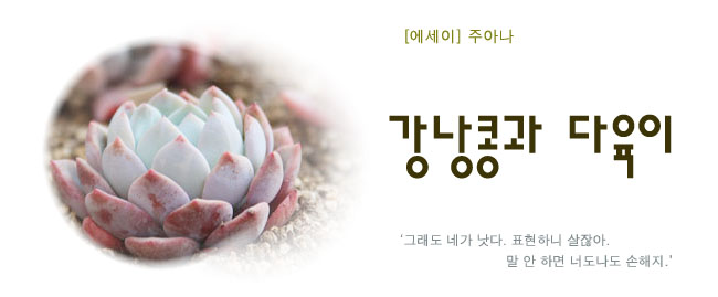 20180809김형영강낭콩과다육이.jpg