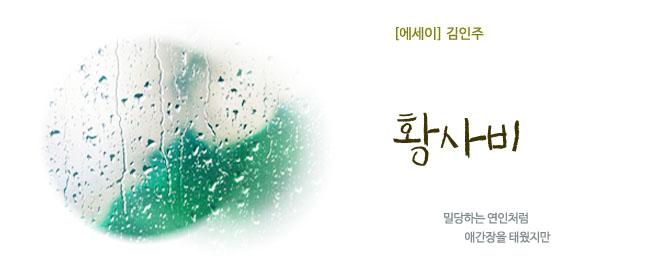 20190405김인주황사비.jpg