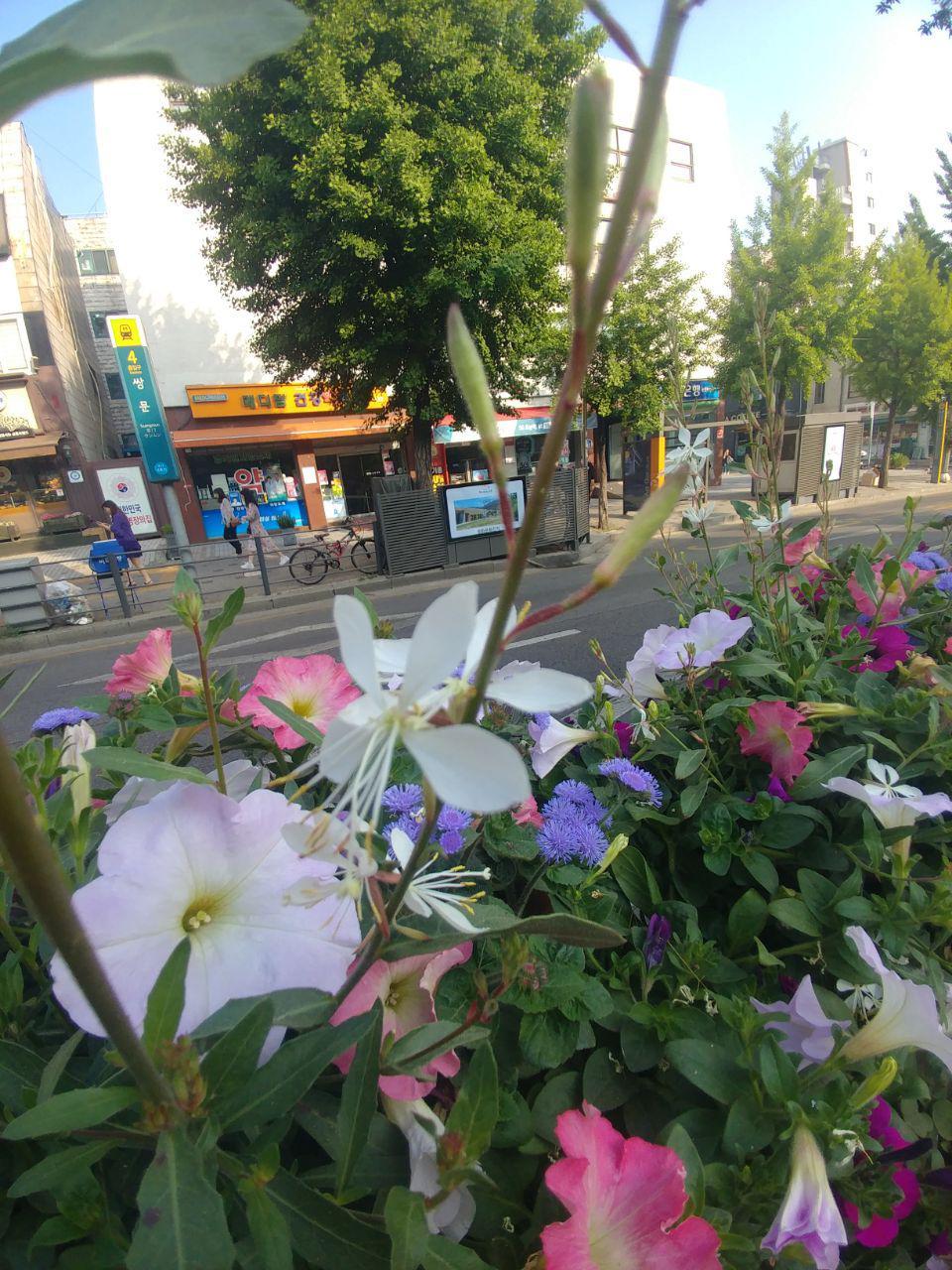 photo_2019-05-19_21-14-28.jpg
