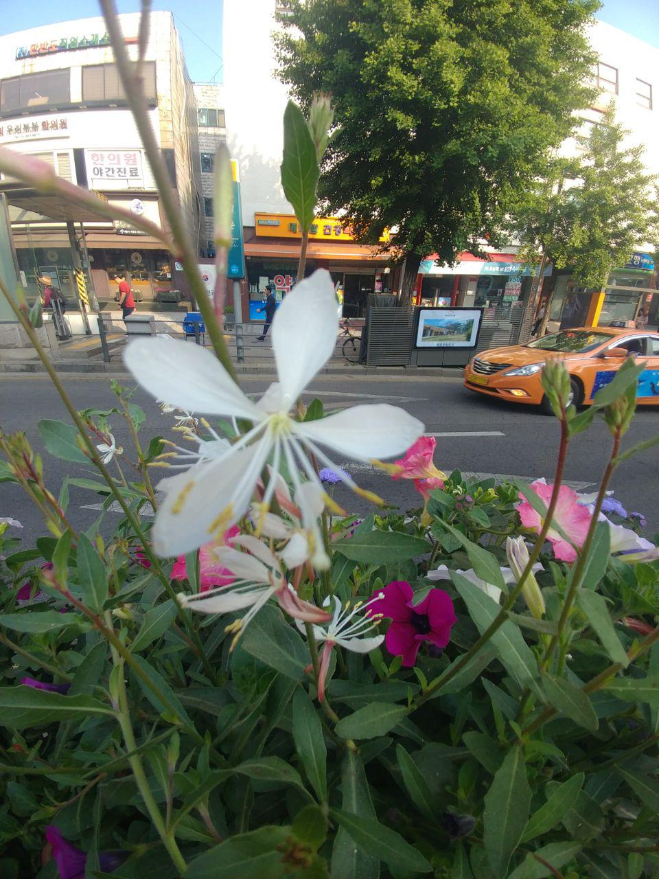 photo_2019-05-19_21-14-32.jpg