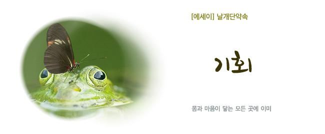 20190731윤성윤-기회.jpg