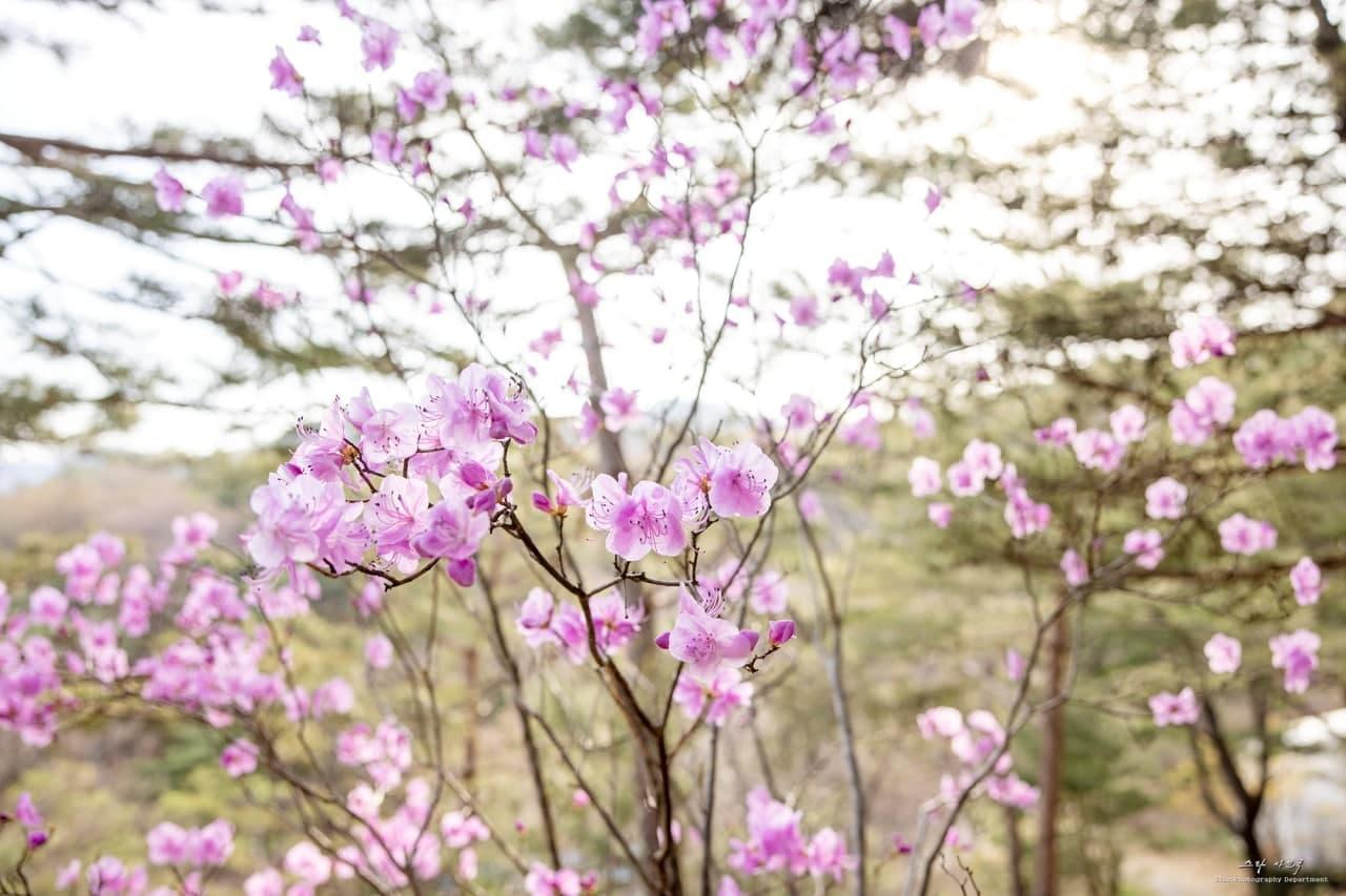 photo_2021-03-30_14-32-12 (2).jpg